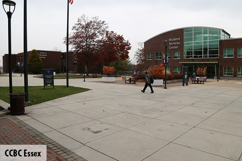Photo of the CCBC Essex quad