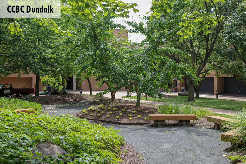 Photo of one of the CCBC Dundalk courtyards