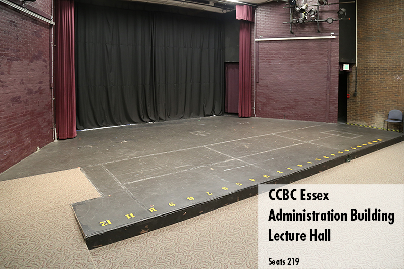 Photo of the lecture hall located on the Essex campus. Seats 209 people.