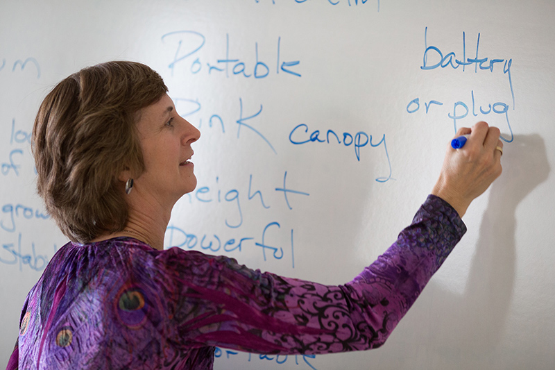 Laura LeMire writing on a dry erase board
