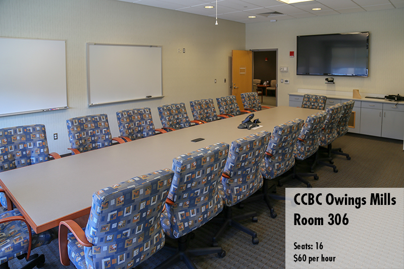 Photo of Owings mills conference room 306